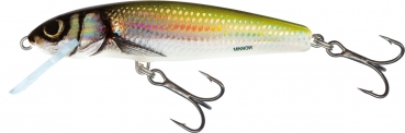 Salmo Minnow Floating 5cm