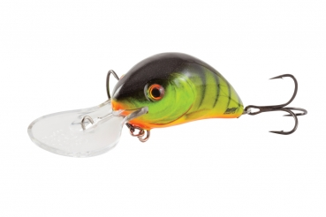 Salmo Rattlin Hornet Floating 4,5cm